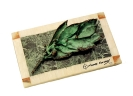 Green-white Marble-Bay leaf-Bronze