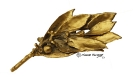 Bay leaf-Bronze-goldplated.
